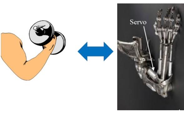 سرو موتور چیست ؟