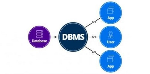 سیستم مدیریت DBMS