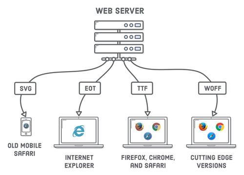 کاربرد وب سرور چیست