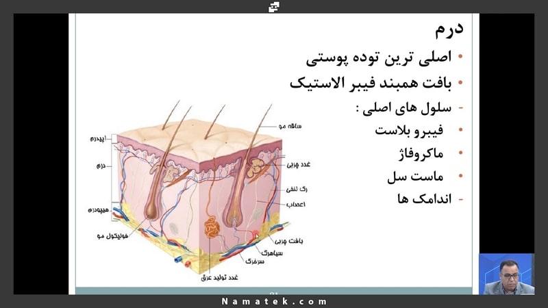 آموزش مدیریت زخم (3)