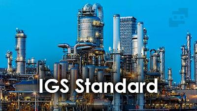 استاندارد IGS